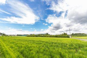 市街化調整区域の土地を生かすための賢い土地活用方法7選