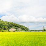 田舎の土地を賢く活かす10の土地活用方法と始める4ステップ