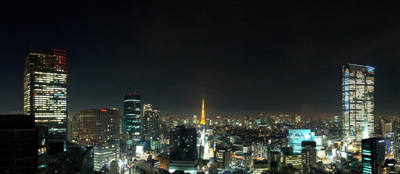 マジェスタワー六本木の眺望