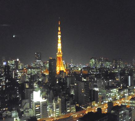シティタワー麻布十番の眺望
