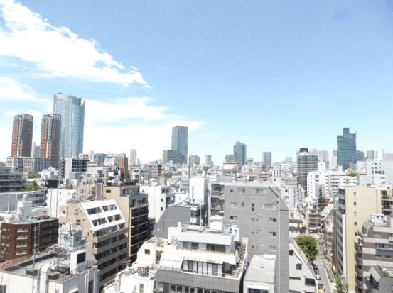 アパートメンツタワー麻布十番の眺望