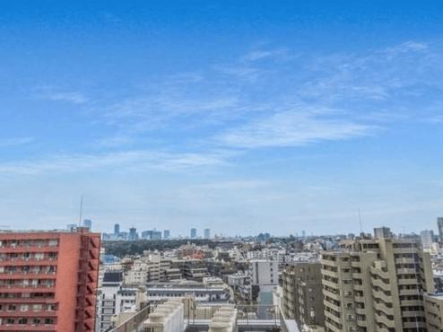 ファミール新宿グランスィートタワーの眺望