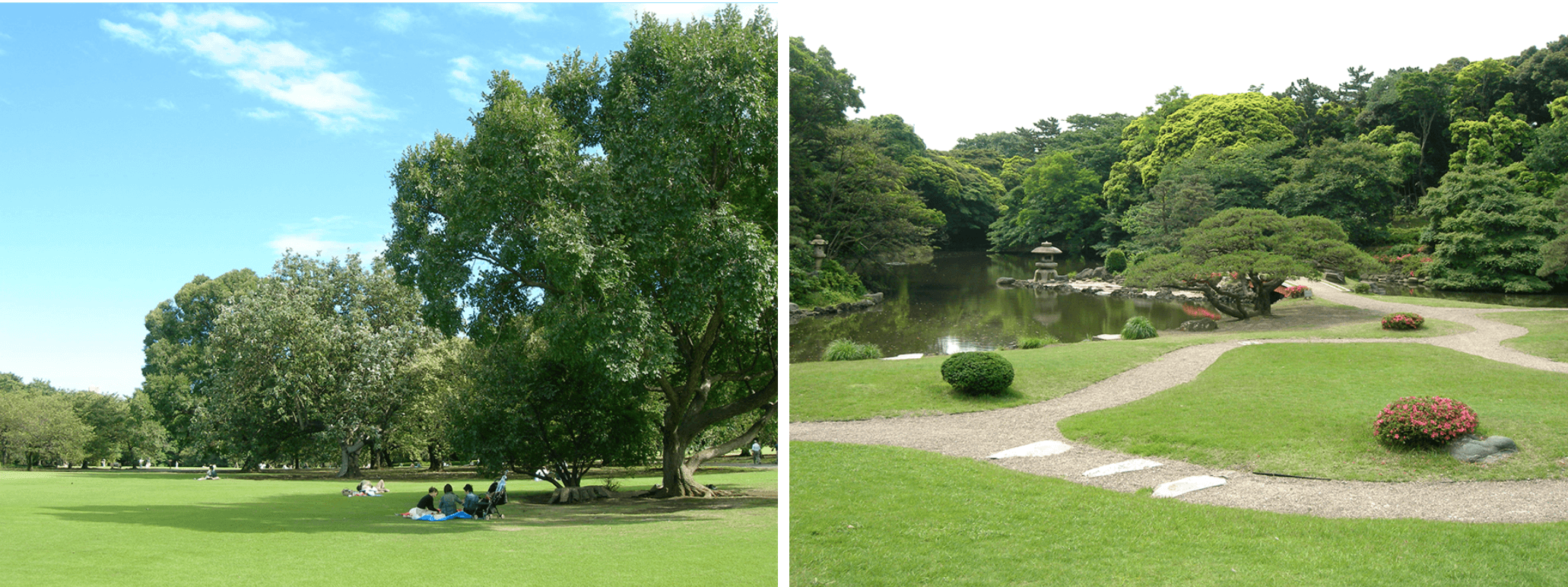 新宿御苑のイメージ