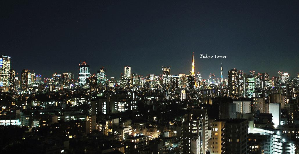 プライムメゾン白金台タワーの眺望