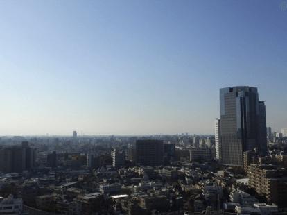 アトラスタワー西新宿の眺望