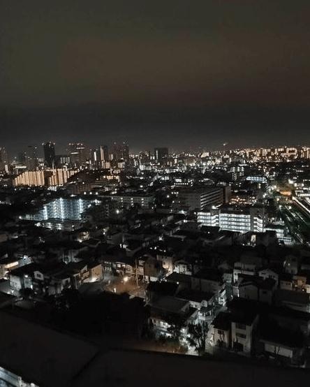 ザ・ミレナリータワーズの眺望