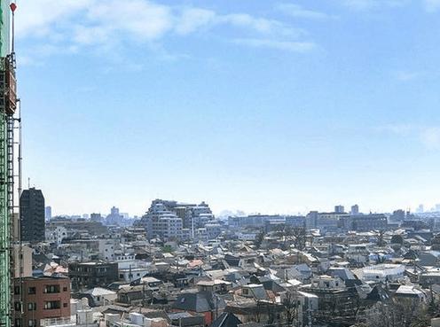 ブリリア大井町ラヴィアンタワーの眺望