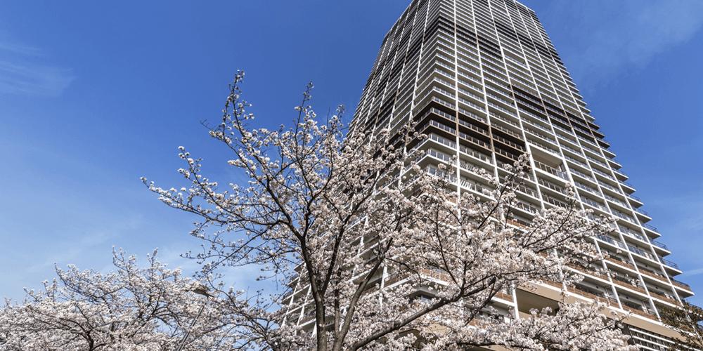 パークタワー東雲の外観