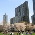「ザ・パーク・レジデンシィズ・アット・ザ・リッツ・カールトン東京」の賃貸で失敗しないための全知識